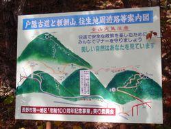 Katura11