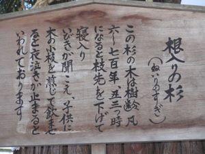 Akimiya2
